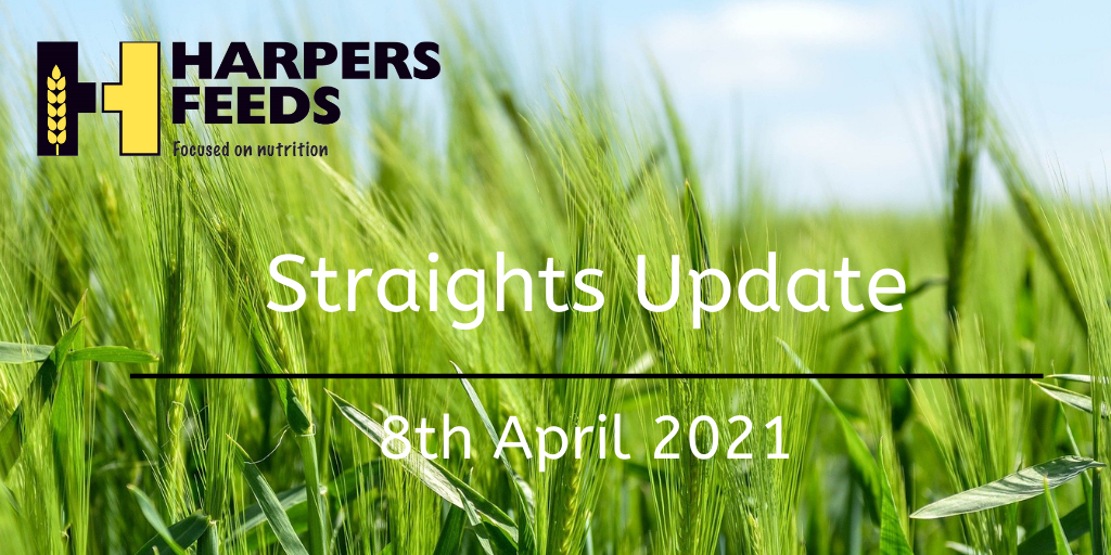 Weekley Straights Update 8th April 2021