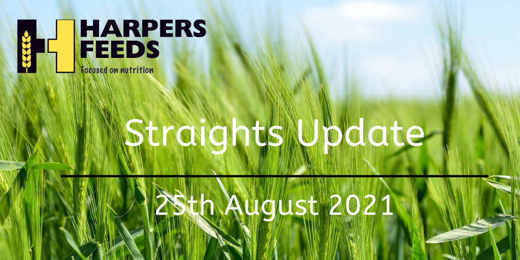Straights Update 25th August 2021
