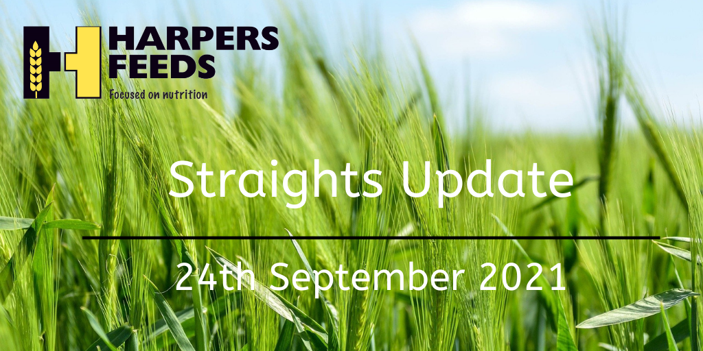 Straights Update 24th September 2021