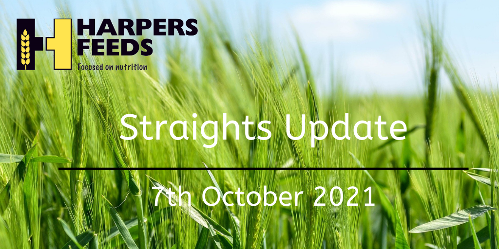 Straights Update 7th October 2021