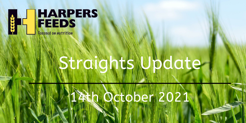 Straights Update 14th October 2021